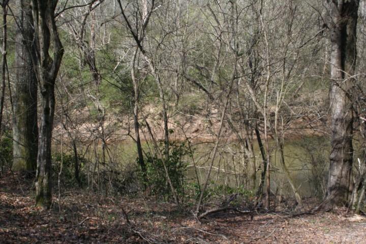 riverfront 44 acres